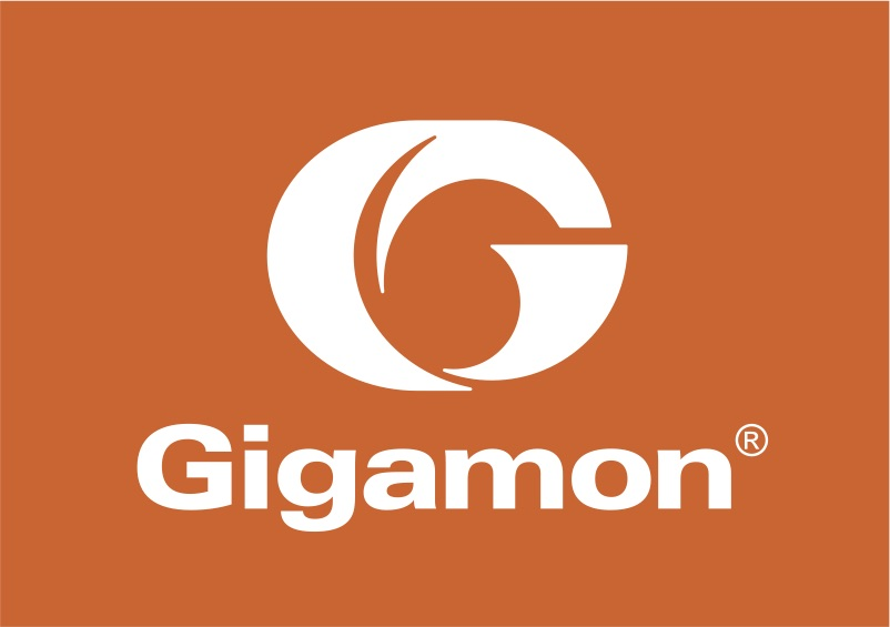 Gigamon-Orange-Box-Logo